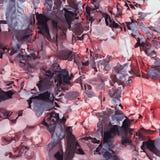 abstrakt bakgrundsblommor Urblekt färgsignal Royaltyfri Foto