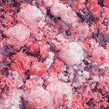 abstrakt bakgrundsblommor Urblekt färgsignal Arkivfoto