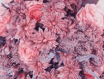abstrakt bakgrundsblommor Urblekt färgsignal Royaltyfria Bilder