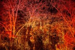 abstrakt bakgrundsdark Trädfilialer på en svart och en röd bakgrund Arkivfoto