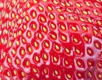 abstrakt bakgrundsfrukt bär fruktt smaklig textur för röd jordgubbe Arkivfoto