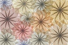 abstrakt bakgrundsleafskelett stock illustrationer