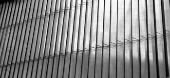 abstrakt bakgrundslinjer svart white Arkivbild