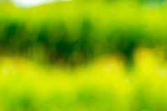 abstrakt bakgrundsnatur Royaltyfria Foton