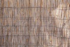 abstrakt bakgrundsskuggor royaltyfri bild