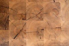 Abstrakt bakgrundstextur av ett naturligt dyrt träd i design Royaltyfria Bilder
