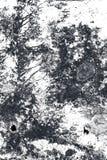 abstrakt bakgrundsvägg Royaltyfri Fotografi