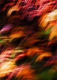 abstrakt barwił światło ruch Zdjęcie Stock