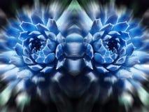 Abstrakt begrepp Art High Quality för isblått royaltyfria foton