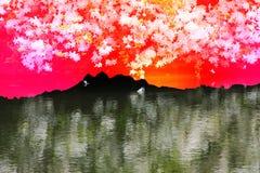 Abstrakt begrepp av berget Royaltyfri Foto