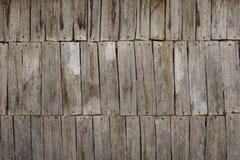 Abstrakt begrepp av gammal wood textur med spikar Royaltyfri Fotografi