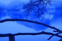 Abstrakt begrepp av sjön Arkivbilder