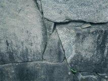 Abstrakt begrepp av stenväggen som används för texturerat Royaltyfri Fotografi