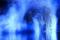 Abstrakt begrepp av trädet Arkivbilder