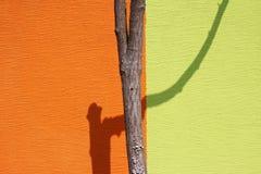 Abstrakt begrepp av väggen Arkivfoton