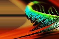 Abstrakt begrepp behandlad bildfjäderfärger & suddighet Fotografering för Bildbyråer