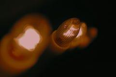 Abstrakt begrepp blinkade julbakgrund Arkivfoto