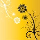 Abstrakt begrepp blommar bakgrund Royaltyfri Fotografi