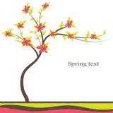 abstrakt begrepp blommar den röda treen Arkivbild