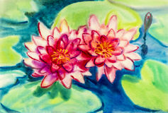 Abstrakt begrepp blommar original- målning för vattenfärgen som är färgrik av skönhetlotusblommablommor Fotografering för Bildbyråer