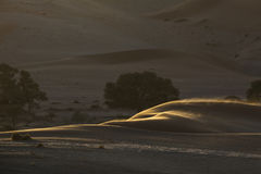 Abstrakt begrepp för sanddyn av former och färg Arkivbilder