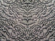 Abstrakt begrepp för siden- tyg för grå färg- och vitfärger Royaltyfria Bilder