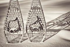Abstrakt begrepp för tappningHuron snöskor Royaltyfria Foton