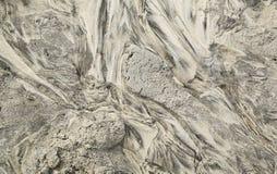 Abstrakt begrepp fodrar i sand på en strand Arkivfoto
