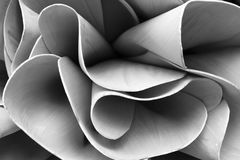 Abstrakt begrepp fodrar på arkitektur modern arkitekturdetalj Förädlat fragment av den moderna kontorsinre/offentlig byggnad Royaltyfri Fotografi