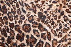 Abstrakt begrepp med leopardtextur Arkivbilder