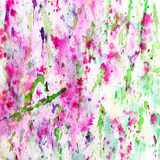 Abstrakt begrepp plaskade och plaskade splotches av färgrika rosa färger Royaltyfria Foton