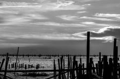 Abstrakt begrepp som är svartvitt av Songkhla sjön i Thailand Royaltyfri Foto
