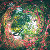 abstrakt begrepp virvlade runt bakgrund av naturen arkivbild