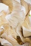 Abstrakt begreppformer av ett pappers- dekorativt objekt, som en skulptur Arkivbilder