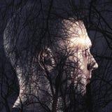 Abstrakt begreppsmässig collage, manprofil och kalt träd Arkivfoto