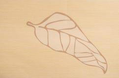 Abstrakt beige bladbakgrund Arkivfoto