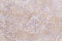 Abstrakt beige rosa ljus marmortexturbakgrund Royaltyfri Fotografi