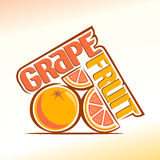 Abstrakt bild av en grapefrukt stock illustrationer