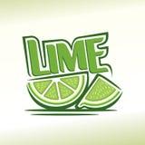 Abstrakt bild av en limefrukt Arkivbild