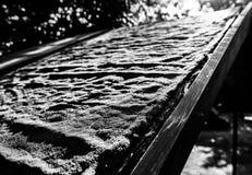 Abstrakt bild av ett gammalt, filttak på ett skjul som ses i ett trädgårds- läge arkivfoto