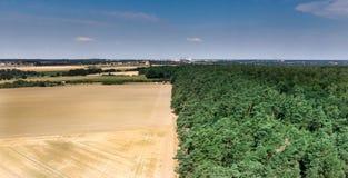 Abstrakt bild av ett skördat vetefält som delas på en skoggräns, i mitt, med blå himmel i bakgrunden fotografering för bildbyråer