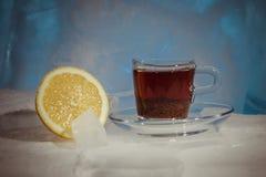 Abstrakt bild av kallt te med citronen, stilleben på is Royaltyfri Bild