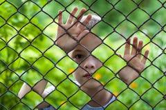 Abstrakt bild av lite pojken bak staketet för chain sammanlänkning foto Royaltyfri Fotografi