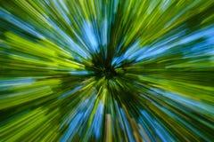 Abstrakt bild av trädet i bygd Skapat, genom att zooma ut, medan stänga slutaren Blured rörelse för zoom hastighet Arkivbild