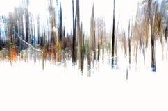 Abstrakt bild av vinterskogskottet med vertikal panorera teknik royaltyfri foto