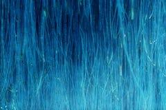 Abstrakt blå bakgrund Royaltyfri Fotografi