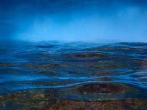 Abstrakt blå bläddrad havyttersida från undervattens- Royaltyfria Foton