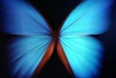 abstrakt blå fjärilszoom Arkivfoto