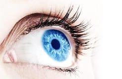 abstrakt blått öga royaltyfria bilder