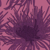 Abstrakt blom- bakgrund. Arkivbilder